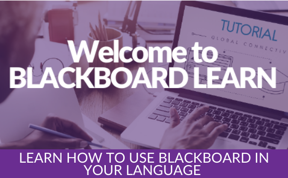 Learn how to use Blackboard in your language
